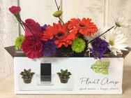 Floral Notes from Kircher's Flowers in Defiance and Paulding, OH