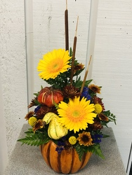 Cool Days from Kircher's Flowers in Defiance and Paulding, OH