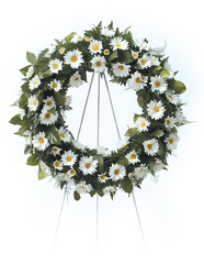 Daisy Wreath from Kircher's Flowers in Defiance and Paulding, OH