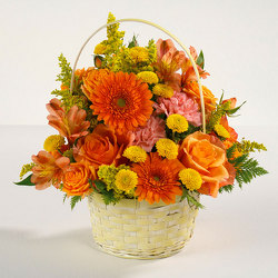 Sunshine Surprise from Kircher's Flowers in Defiance and Paulding, OH