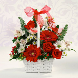 Red & White Delight from Kircher's Flowers in Defiance and Paulding, OH