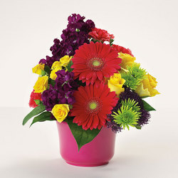 Bowl of Bright Wishes from Kircher's Flowers in Defiance and Paulding, OH
