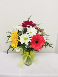Daisy Delight from Kircher's Flowers in Defiance and Paulding, OH