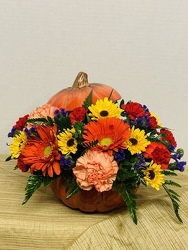 Pumpkin Fun from Kircher's Flowers in Defiance and Paulding, OH
