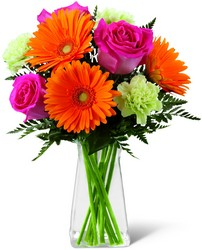 The FTD Pure Bliss Bouquet from Kircher's Flowers in Defiance and Paulding, OH